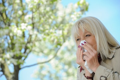 seniors and allergy season