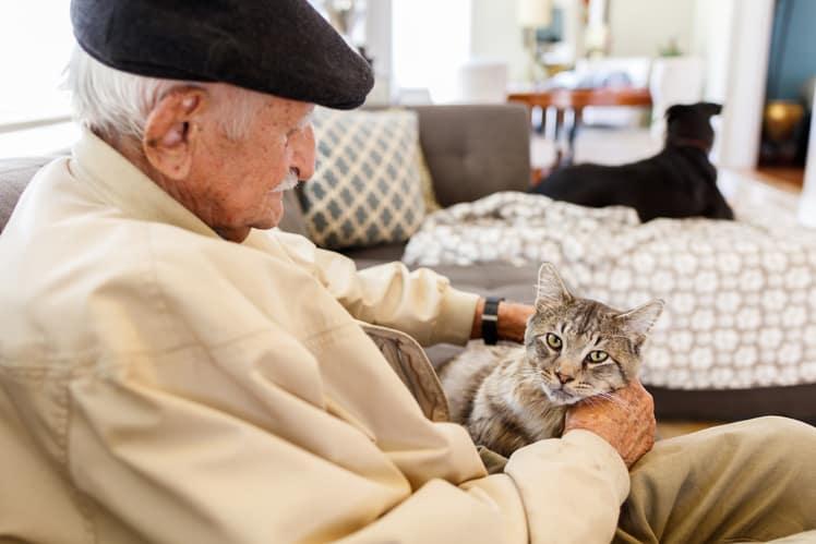 7 reasons seniors benefit from pet adoption